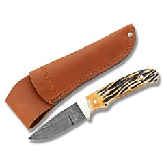 "Bear & Son Hunter with Genuine India Stag Handle and Damascus Steel 2.75"" Drop Point Plain Edge Blade Model 548D"