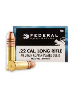 Federal Game-Shok 22 LR 40 Grain Copper Plated Solid Point 500 Rounds