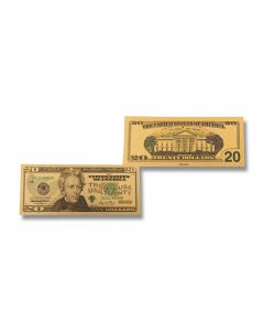 Silver 20 Dollar Foil Bill