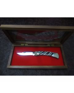 Painted Pony Custom Buck 110 knife 3.688 inch blade with green egg shell handles stainless steel plain blade edge