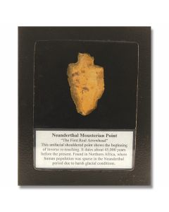 Neanderthal Mousterian Point – 1 Piece