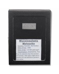 Muonionalusta Meteorite Slice